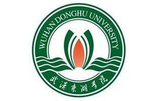 武汉东湖学院招生简章2020,湖北省教育考试院官方公布